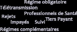 Régime obligatoire - Télétransmission - Professionnels de Santé - Rejets - Tiers Payant - Impayés - Suivi - Régimes complémentaires