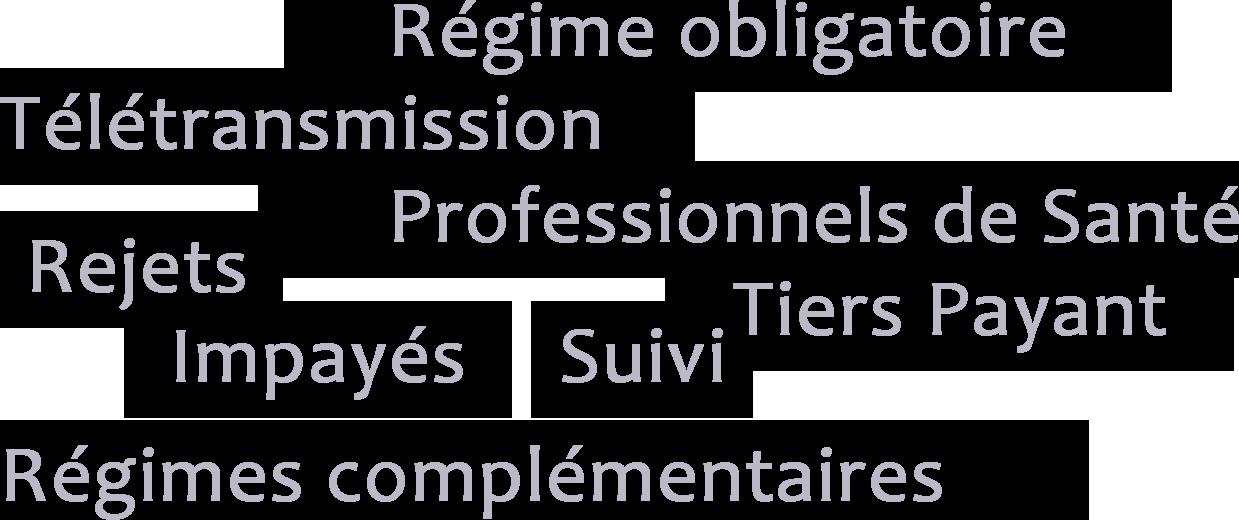 Régime obligatoire - Télétransmission - Professionnels de Santé - Rejets - Tiers Payant - Tiers-Payant - Impayés - Suivi - Régimes Complémentaires